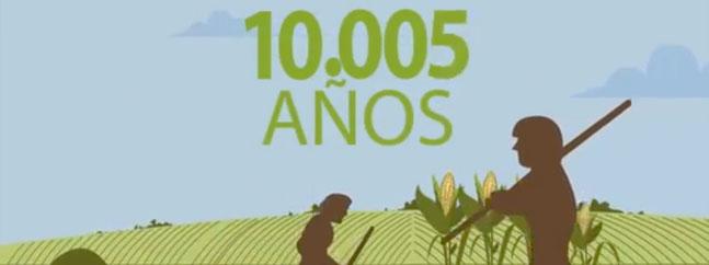 Videos chilebio transgenicos biotecnologia agraria