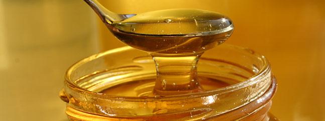 miel modificada geneticamente polen union europea