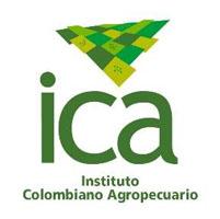 transgenicos colombia algodon maiz claveles