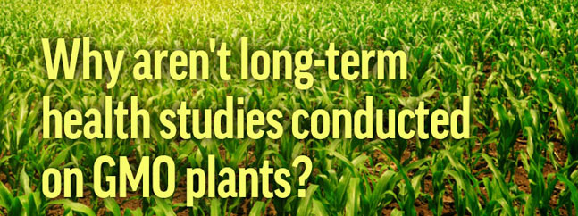 gmo answers transgenicos biotecnologia agraria
