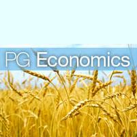 PG Economics informe transgenicos beneficios