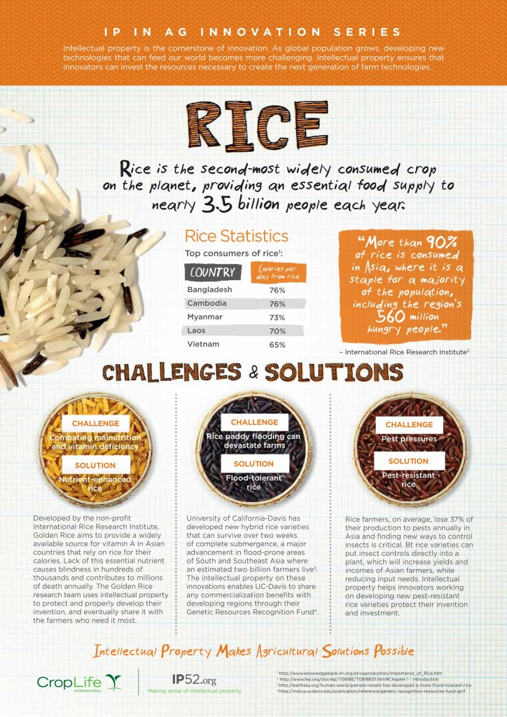 rice_infographic_final_web