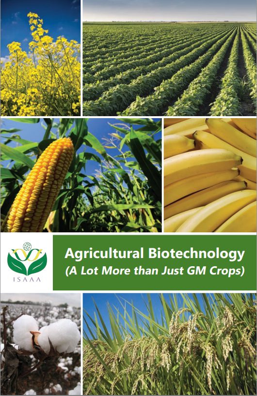 Guia ISAAA biotecnologia agraria