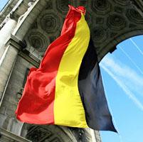 belgica transgenicos consumidores