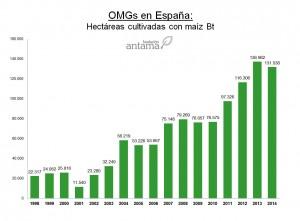 Cifras Bt españa 2014