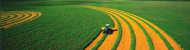 agricultura biotecnologia campo