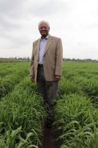 sanjaya rajaram premio mundial alimentos 2014