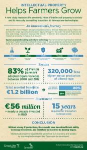 infografia informe propiedad intelectual
