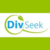 Divseek