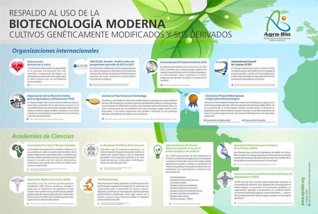 Infografia Organizaciones Internacionales GM_10