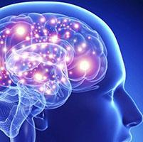 mente humana rechazo transgenicos