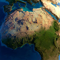Africa vista pajaro