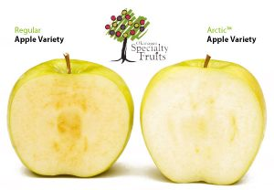 manzana-transgenica