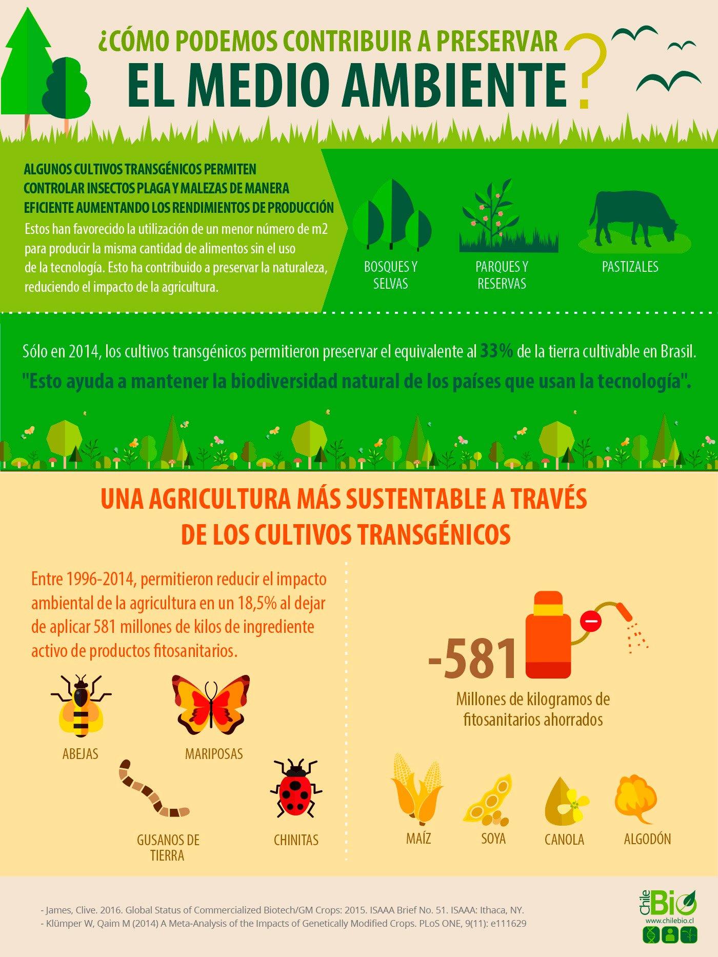 infografia-chilebio-medioambiente
